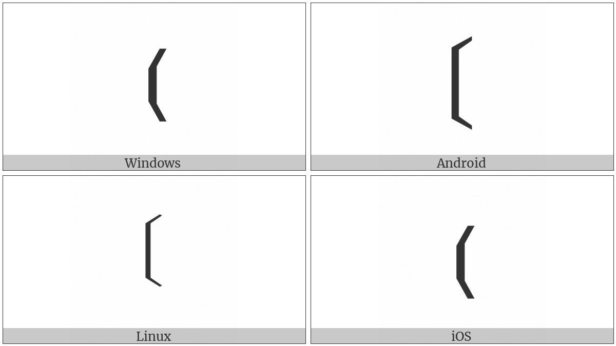 Light Left Tortoise Shell Bracket Ornament on various operating systems
