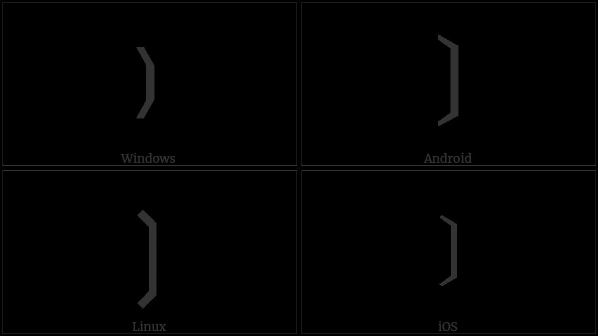 Light Right Tortoise Shell Bracket Ornament on various operating systems