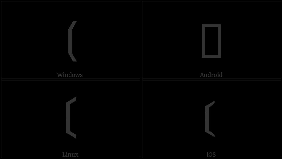 Left Black Tortoise Shell Bracket on various operating systems
