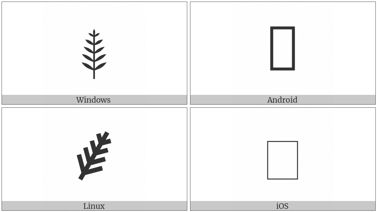 Palm Branch on various operating systems