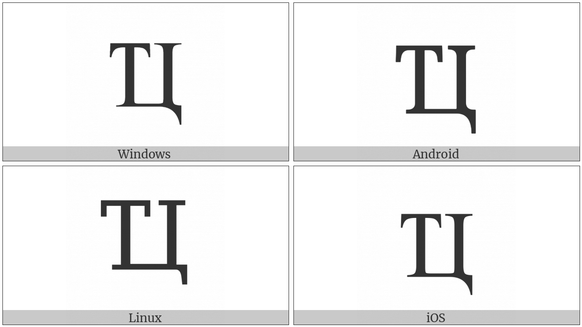 Cyrillic Capital Ligature Te Tse on various operating systems