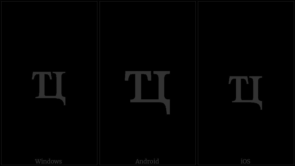 Cyrillic Small Ligature Te Tse on various operating systems