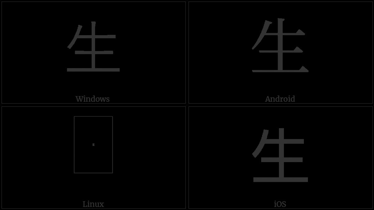 Kangxi Radical Life on various operating systems