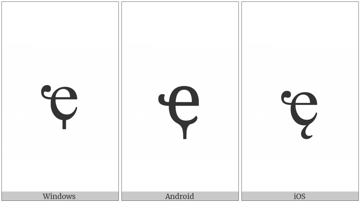 Cyrillic Small Letter Abkhasian Che With Descender on various operating systems