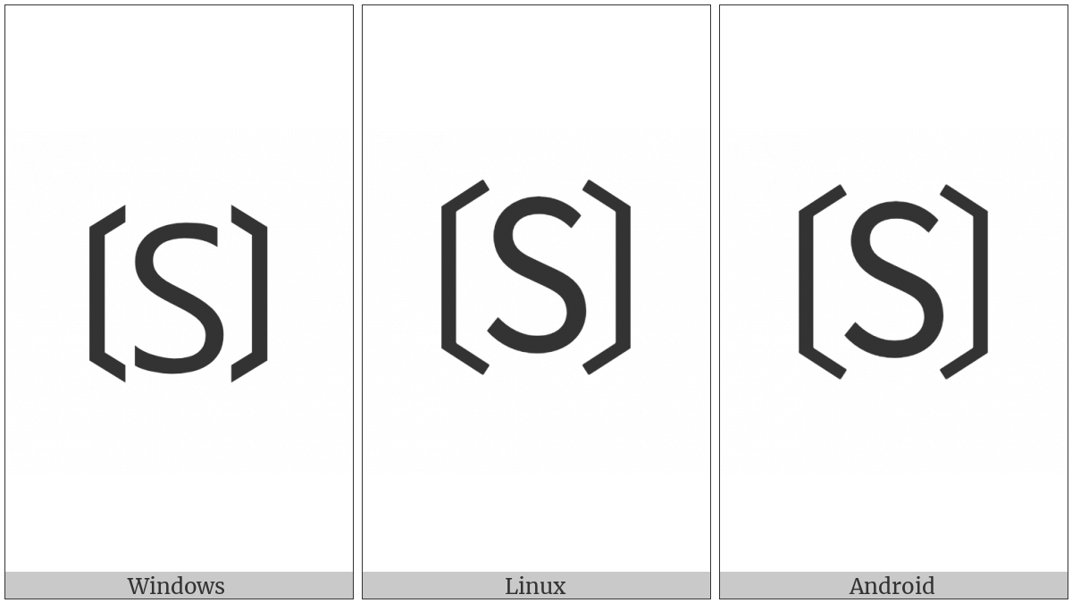 Tortoise Shell Bracketed Latin Capital Letter S on various operating systems