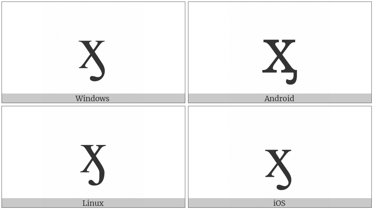 Cyrillic Small Letter Ha With Hook on various operating systems
