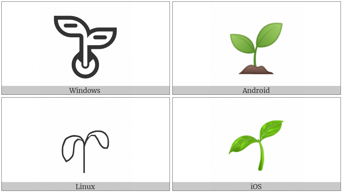 Seedling on various operating systems