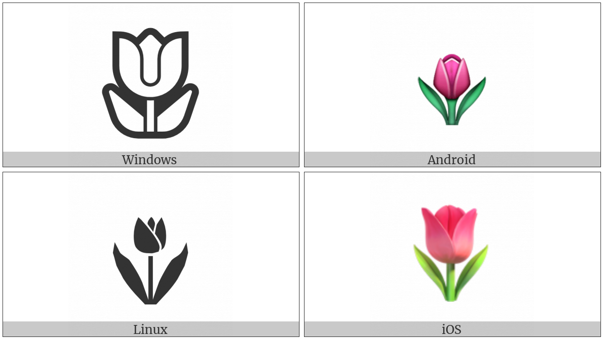 Tulip on various operating systems