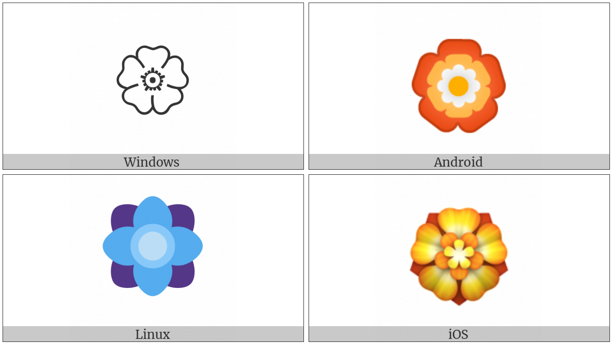 Rosette on various operating systems