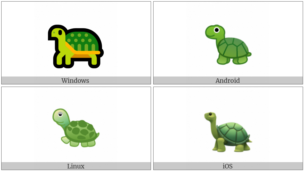Turtle on various operating systems