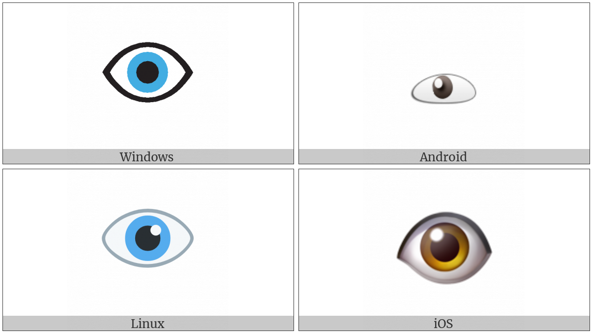 Eye on various operating systems
