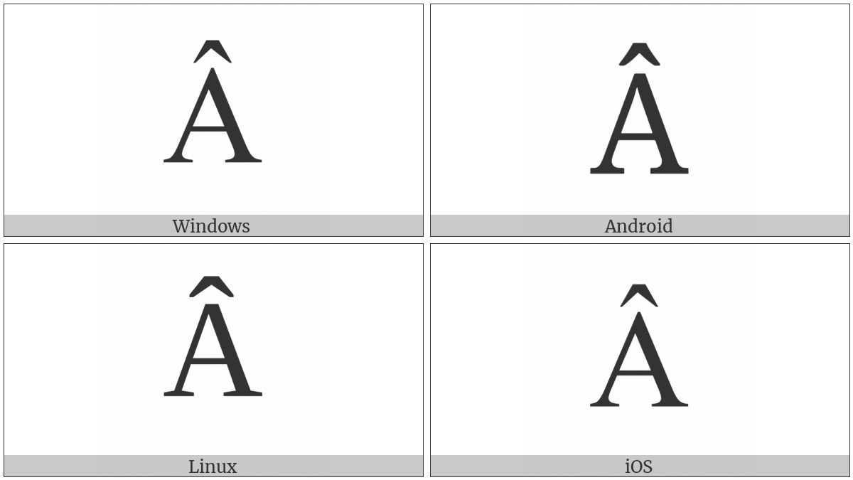 Latin Capital Letter A With Circumflex on various operating systems