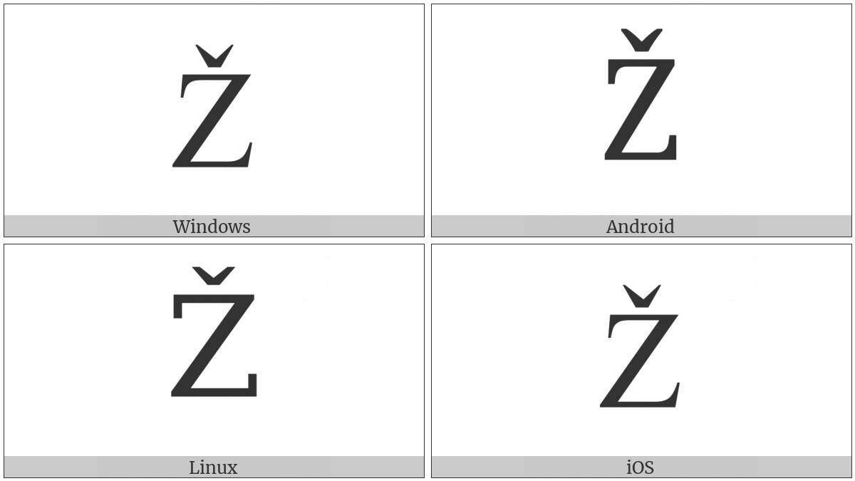 Latin Capital Letter Z With Caron on various operating systems