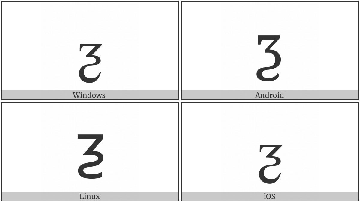 Latin Small Letter Ezh With Tail on various operating systems