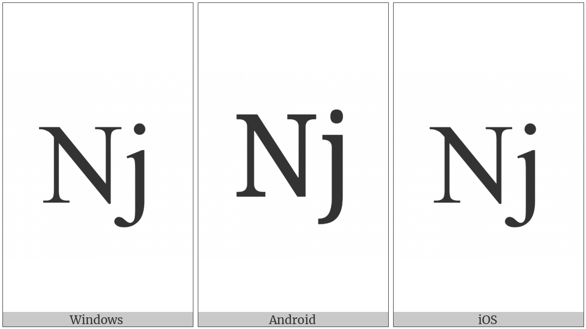 Latin Capital Letter N With Small Letter J on various operating systems