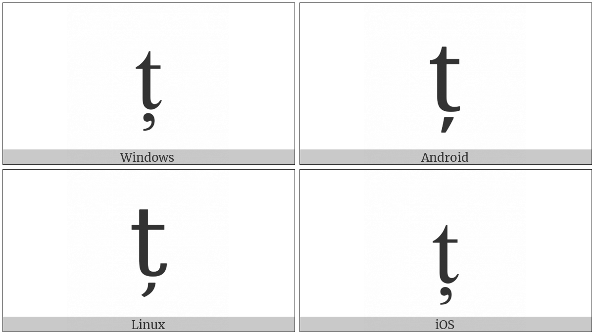 Latin Small Letter T With Comma Below on various operating systems