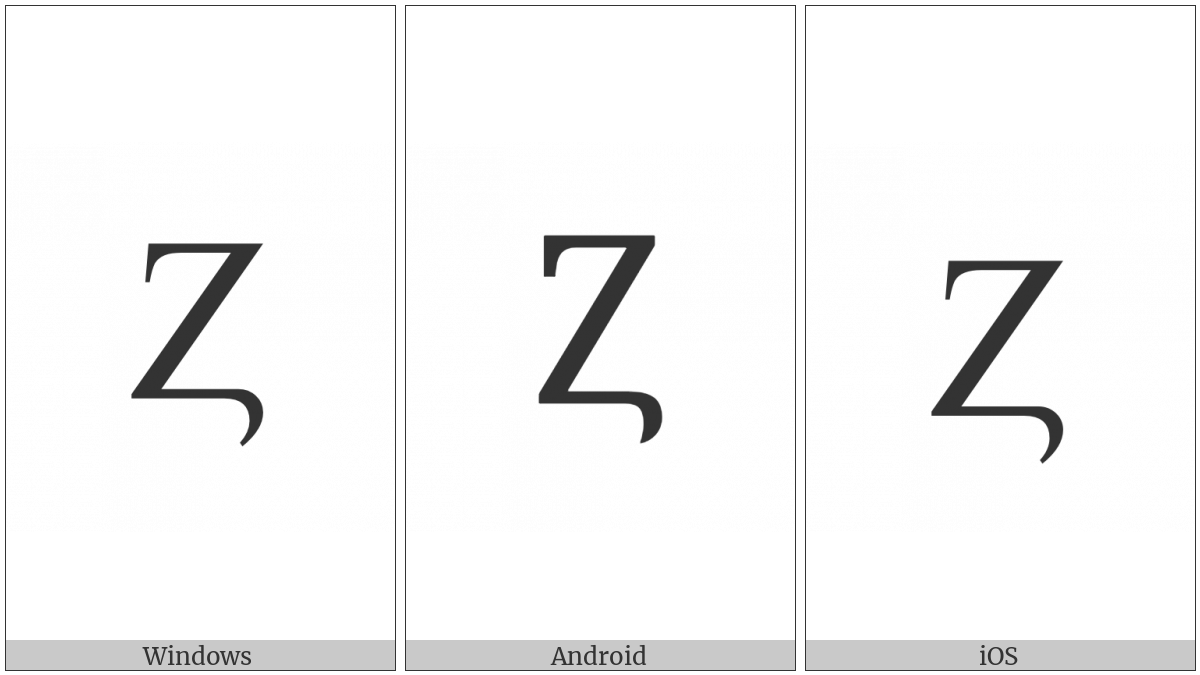 Latin Capital Letter Z With Hook on various operating systems