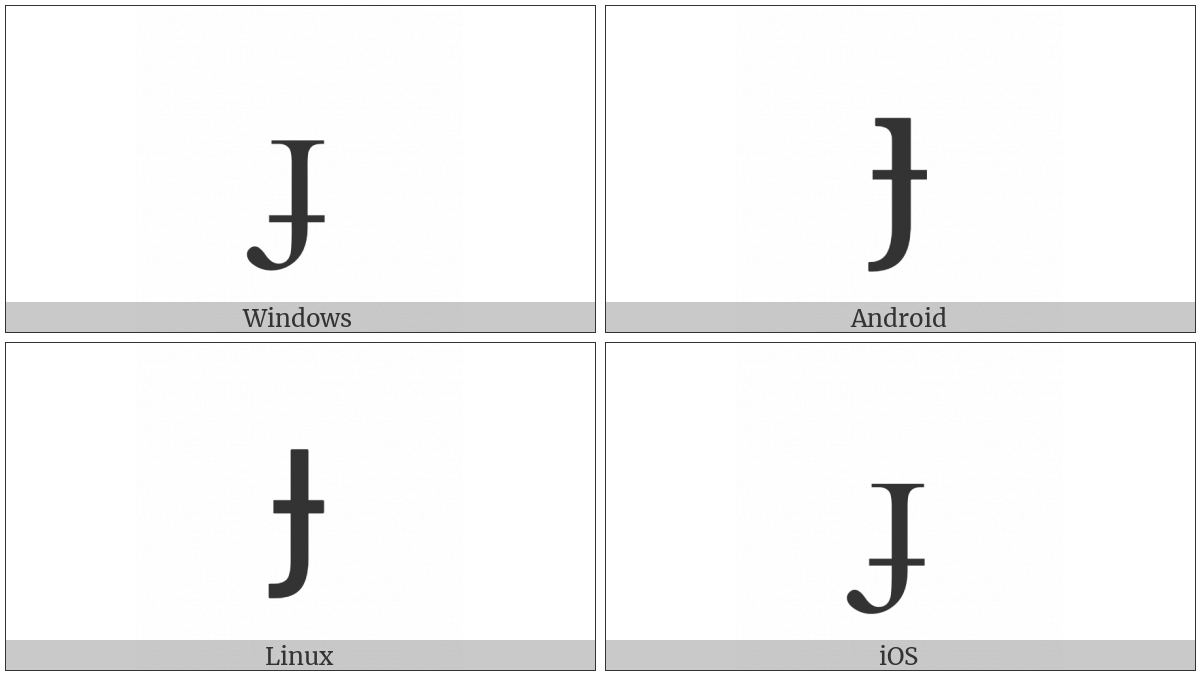 Latin Small Letter Dotless J With Stroke on various operating systems