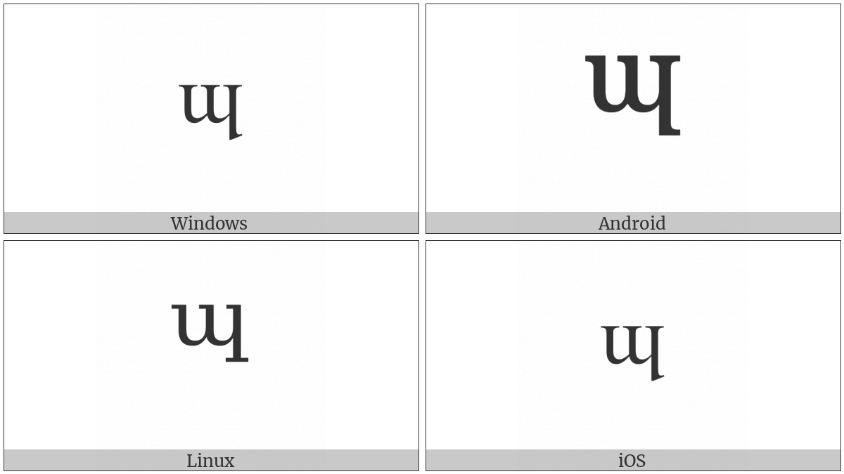 Modifier Letter Small Turned M With Long Leg on various operating systems