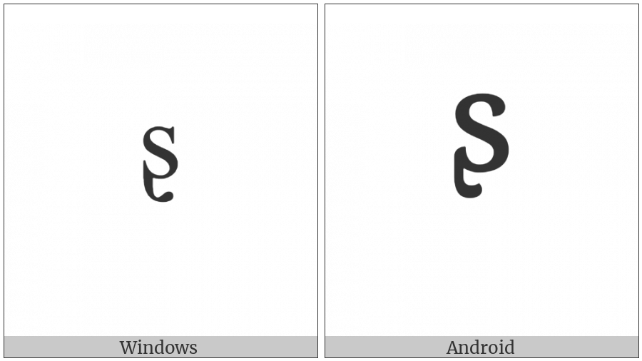 Modifier Letter Small S With Hook on various operating systems