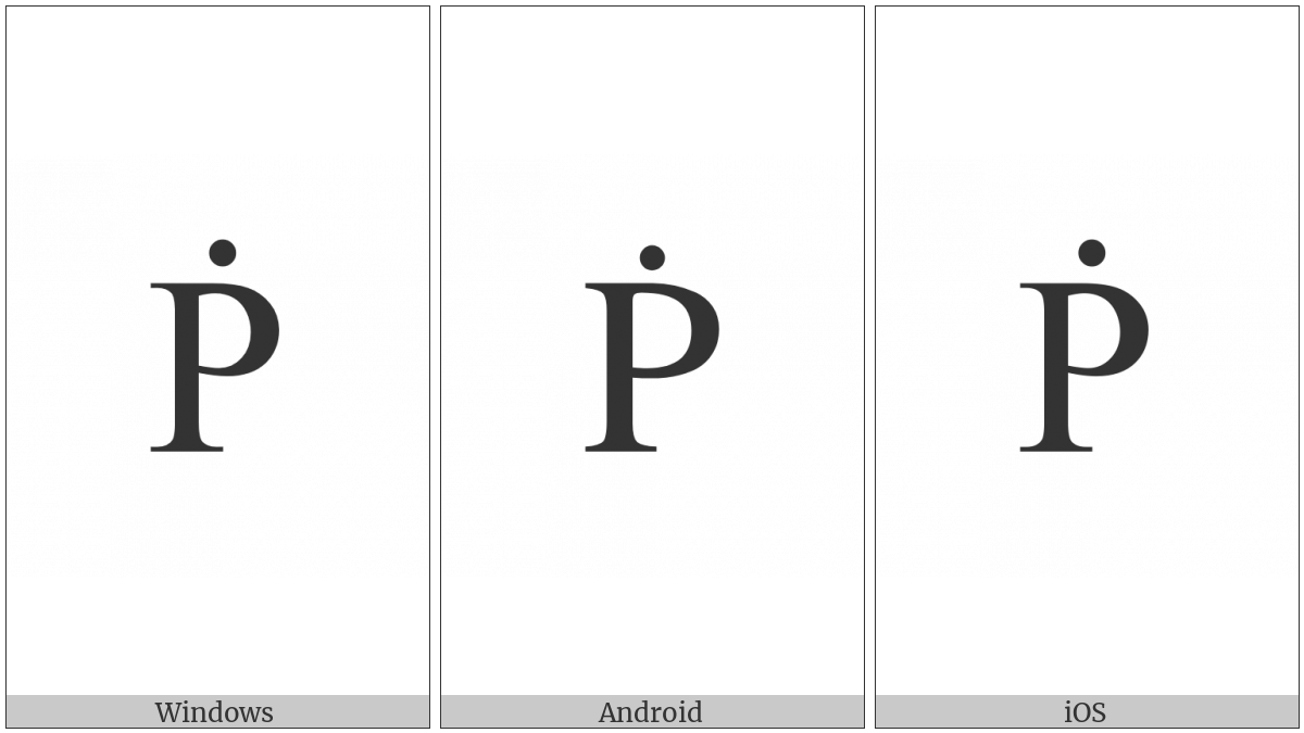 Latin Capital Letter P With Dot Above on various operating systems