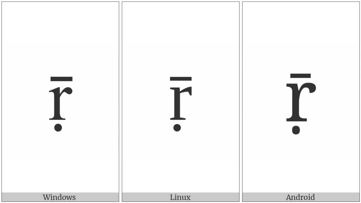 Latin Small Letter R With Dot Below And Macron on various operating systems